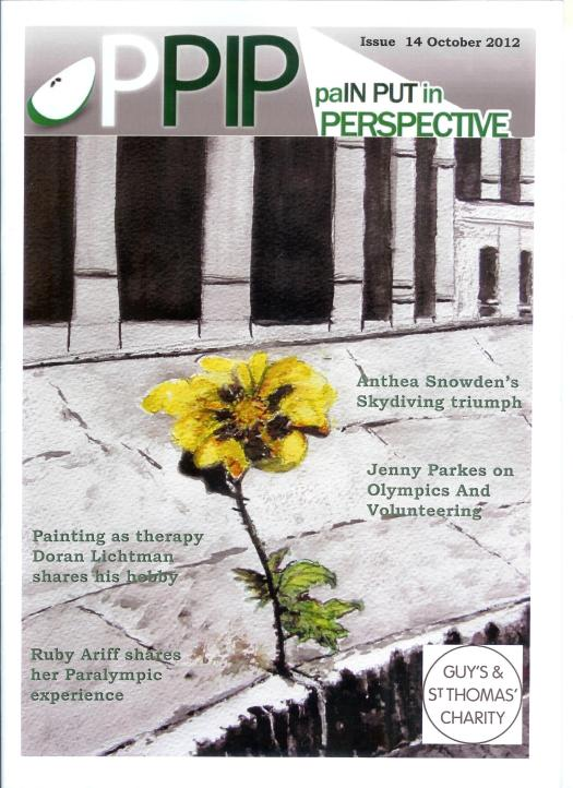PPIP magazine