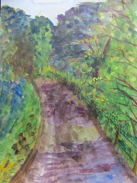 Wilmot Path