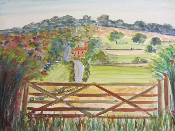 Penshurst Fields