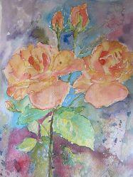 Rose tn