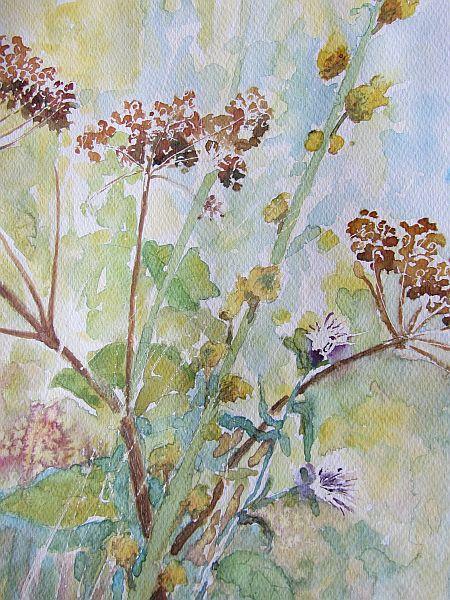 Dry Flowers tn