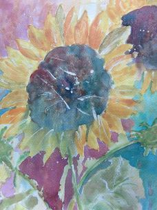 Sun Flower tn